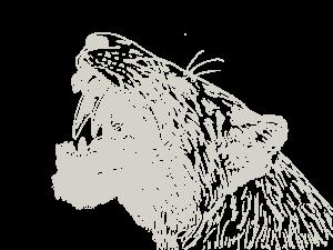 Zeichnung Tiger